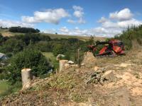 Abattage de frênes secteur Eure (27)